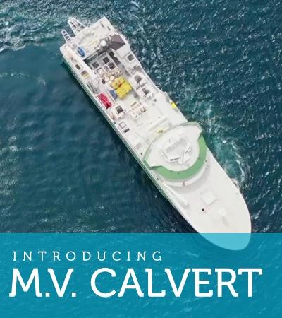 M.V. Calvert